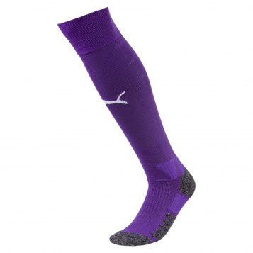 Switzerland Goalkeepers WC Socks 2018-19 violet